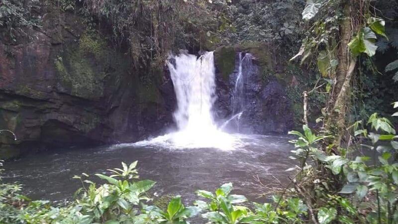 Cachoeira da Fumaça- pedal